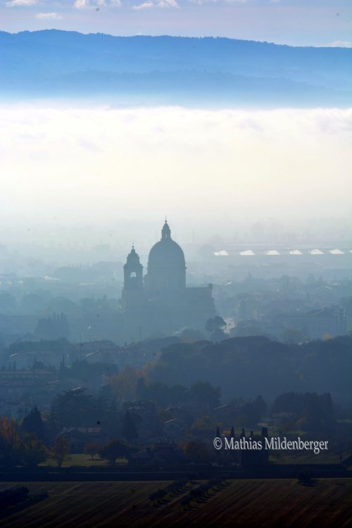 Fog, from Assisi